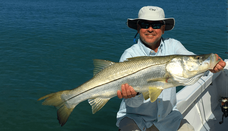 Huge snook caught with Capt. Cameron in Englewood, FL