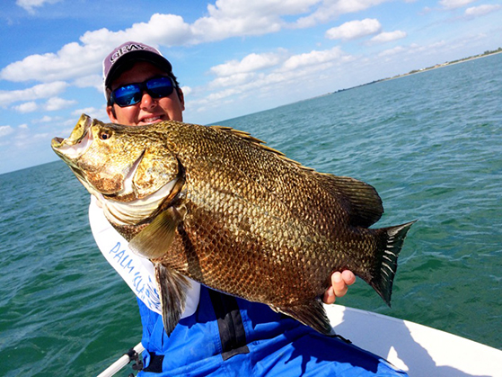 Nov 2014 monthly swfl fishing report grande adventures for Gulf coast fishing report